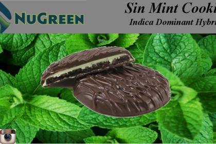 sinmintcookies